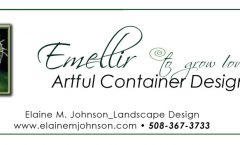Embellir__The Art of Container Design